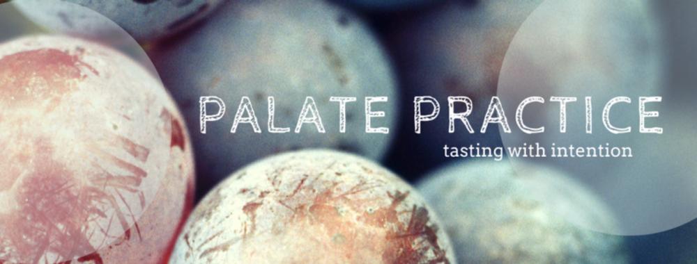 Palate Practice